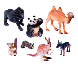 Set animales salvajes 3